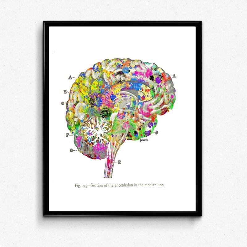 Brain Prints