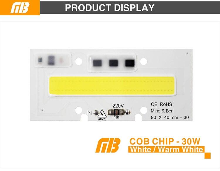 COB CHIP_02