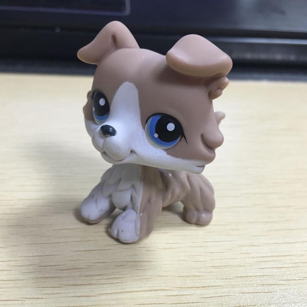 Lps collection figure cadeau gris colley chien pet shop - Chien pet shop ...