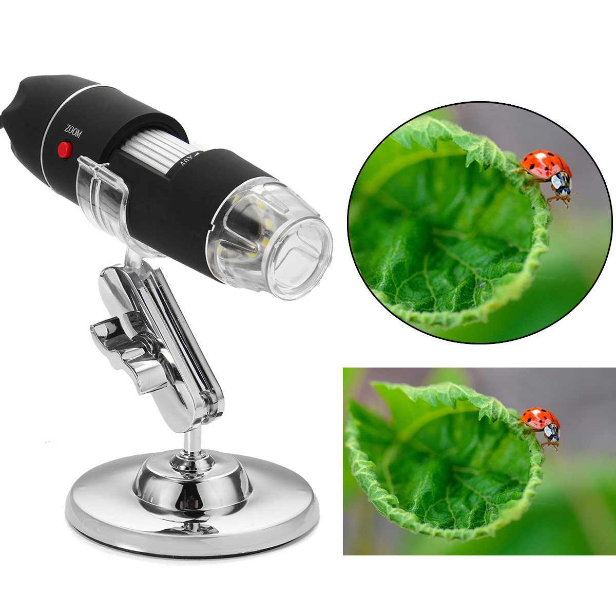 2MP 1600X 8 LED USB2.0 Zoom Digital Microscope Hand held Biological Endoscope Vision Camera Video Stand arrival 2 0m pixels usb hand held microscope with 8 led lights se v3 usb500 300