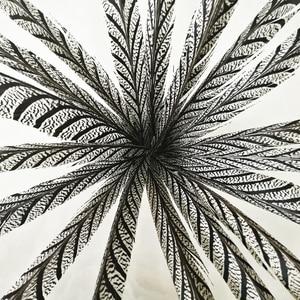 Image 2 - Hotsale 10 adet 80 100 cm uzun Sülün Tüyleri Doğal Zebra Sülün Kuyruk Tüyleri Samba Tüy Lady Amherst Sülün tüyler