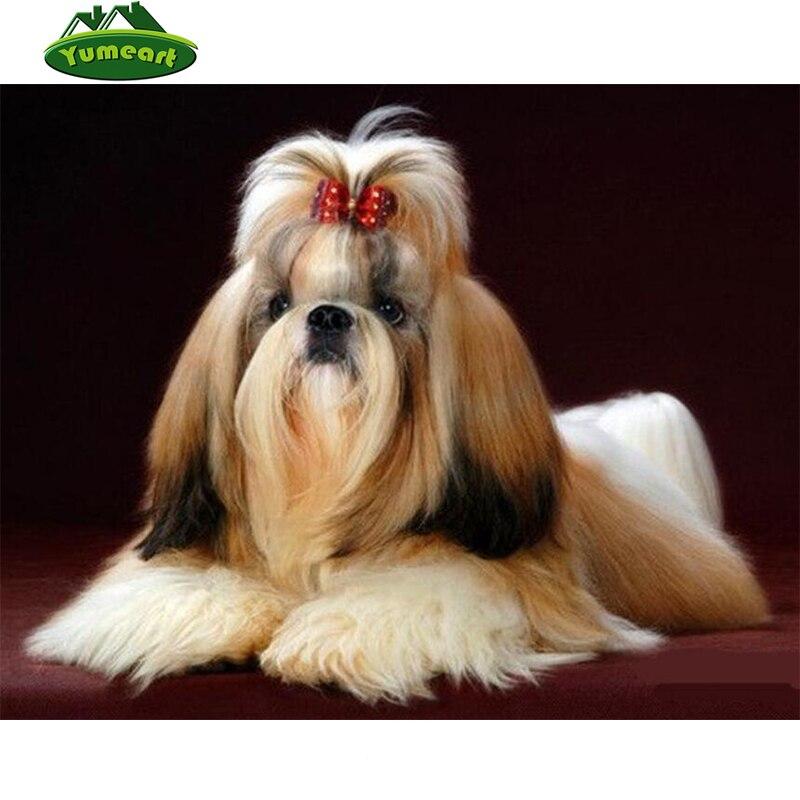 Good Shih Tzu Anime Adorable Dog - HTB1_ipNgesAV1JjSZFsq6ydZXXaV  Pic_381069  .jpg