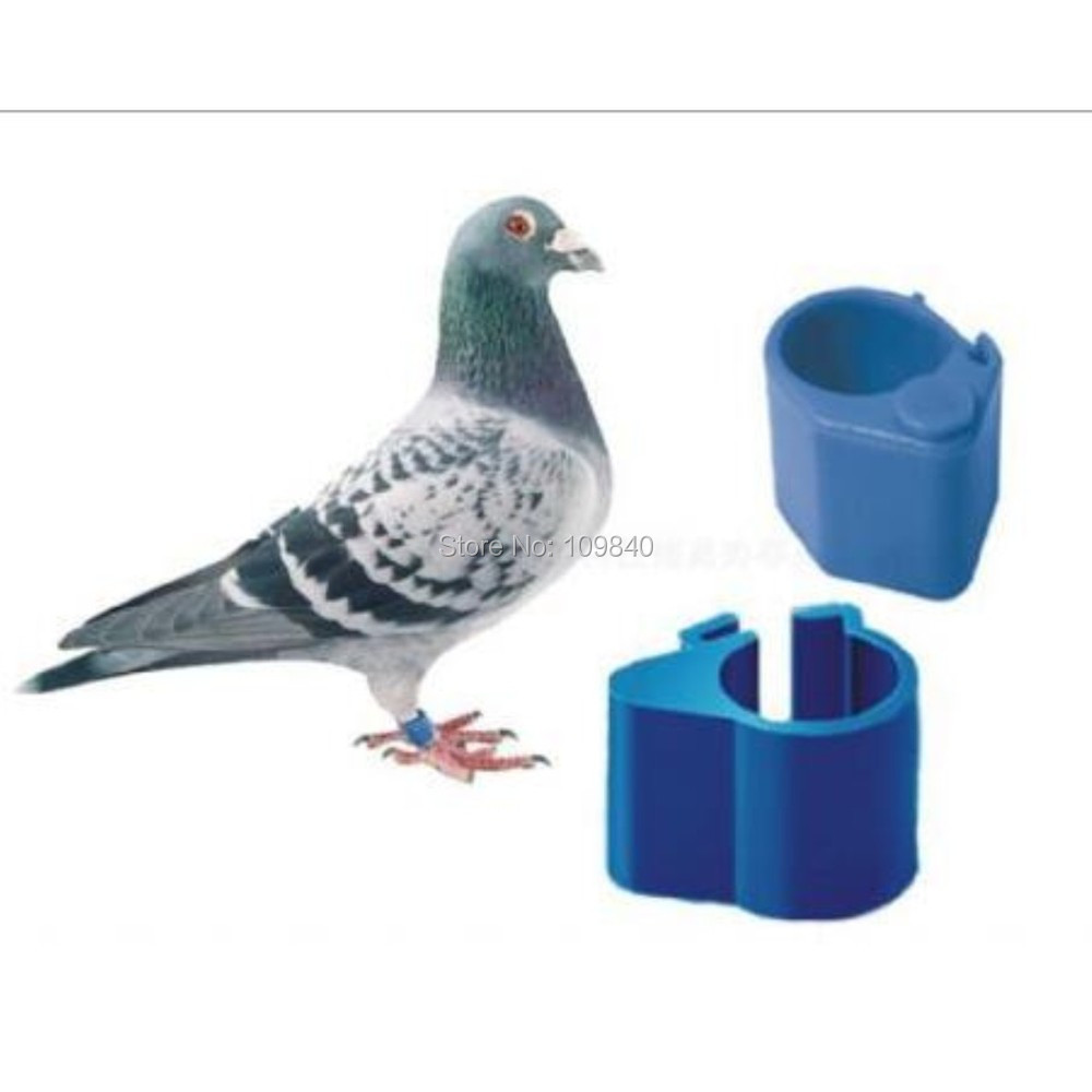 Hot selling 125KHz/134.2KHz Bird leg bands/rfid ring tag for pigeon with Hitag S256 chip 134 2khz rfid pigeon tag ring with hitag s256 chips for identification and tracking 10pcs lot