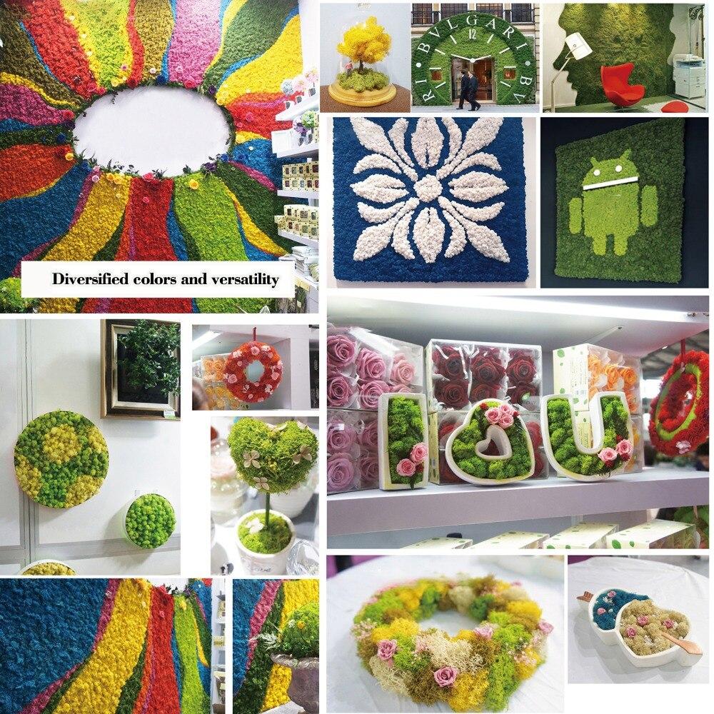 Natural Norwegian Reindeer Moss Preserved Dried Craft Flower Stamen Decoration