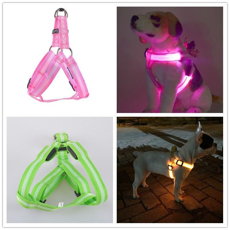 C02 Svetlobni pas pas za hišne pasje luči za pasje lučke za - Izdelki za hišne ljubljenčke