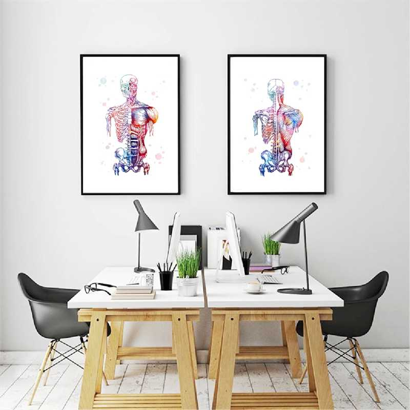 Canvas Art Printed Modular Picture Human Muscles Nordic Poster Skeleton Anatomy Watercolor Painting Body Medical Wall Decoration