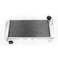 BIKINGBOY Radiator Engine Cooling for YAMAHA FZS600 Fazer 98 99 00 01 02 03 Water Cooler 22MM Aluminium Core With Cap Motorcycle