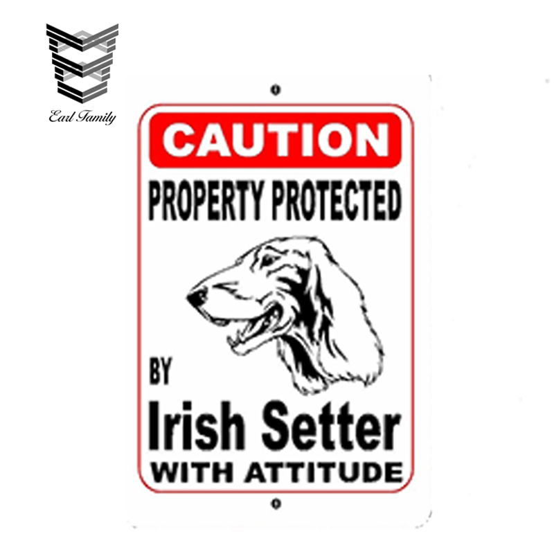 EARLFAMILY 13cm X 8.7cm Car Styling Property Protected By Irish Setter Dog Breed with Car Sticker JDM Vinyl Decal Accessories