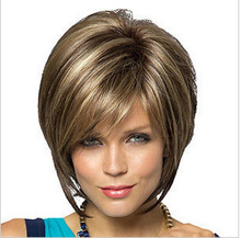 Astounding Highlight Wig Online Shopping The World Largest Highlight Wig Hairstyles For Women Draintrainus