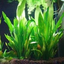 Пластик 15 см искусственная зеленая трава водное растение трава для аквариума