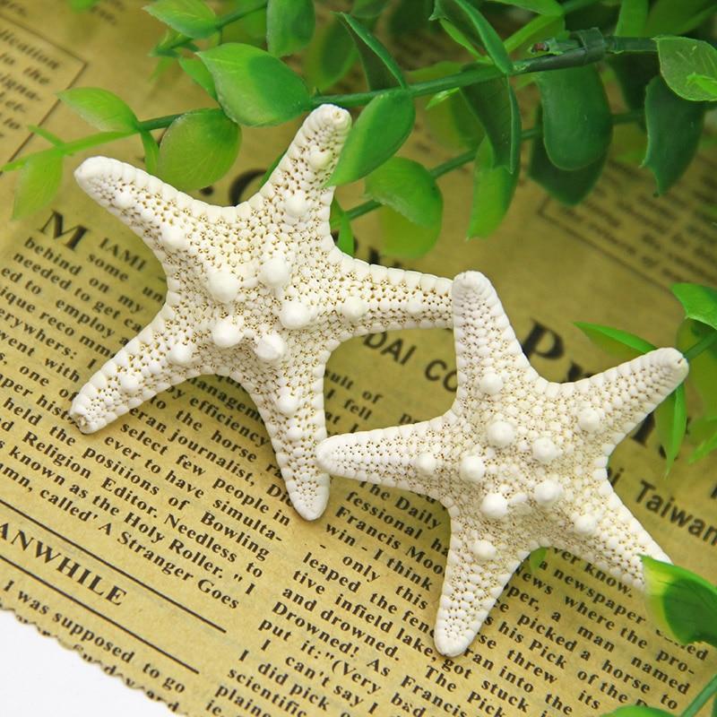Home Decor 3PC White Starfish 3-8cm White Natural Finger Sea Star Wedding Decor Seashells  Seafish  Party Beige Seastar Crafts