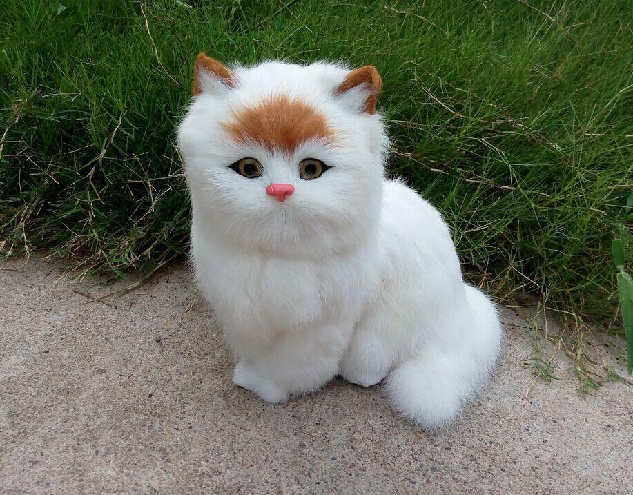 new simulation cat toy polyethylene & furs handicraft big head cat model gift about 24x24cm 1504 big sitting simulation white cat model plastic