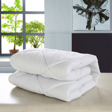 White Four Seasons Beauty Duvets massage dedicated Polyester cotton comforter salon air conditioning quilt core 80*120