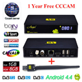 Freesat V8 Angel Receptor Satellite Receiver Android 4.4 Kodi TV Box With Cccam free cline for 1 year Support IPTV DVB-S2 T2/C