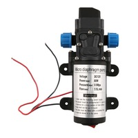 DC 12V Electric Diaphragm Water Pump Automatic Switch 131 PSI High Pressure Car Washing Spray Water