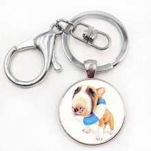 New Movie Bull Terrier Dog Cute Animal Photo Glass Vintage Keychain Gift Men Women Steampunk Silver Keychain Wedding(China)
