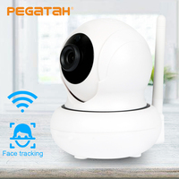 Wifi 1080P Face Tracking Wifi PTZ IP Camera P2P Wireless Onvif Network Security Two way Audio Monitor Night Vision Max 128G