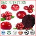 900g de Alta qualidade Cranberry/Mossberry/Mirtilo Em Pó com frete grátis, 10:1