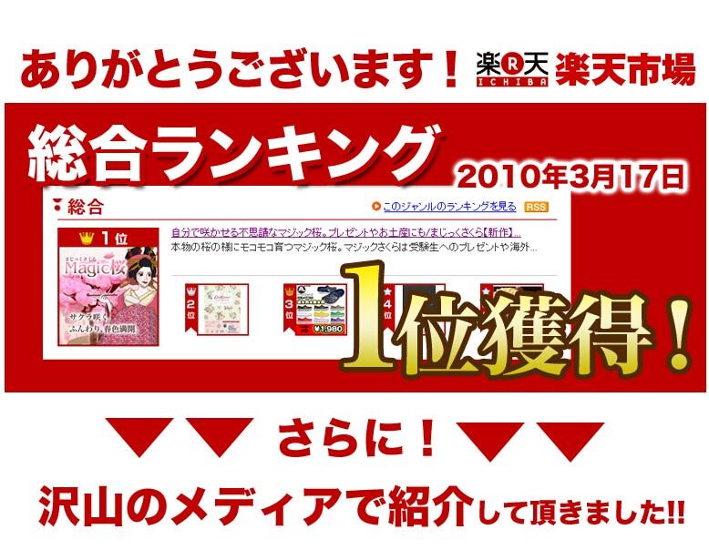 2017 14x11 cm Rosa Grande Crecer Magia de Papel de Sakura Árbol - Nuevos juguetes y juegos - foto 2