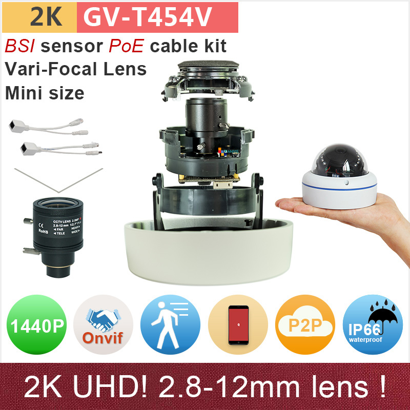 2.8-12mm H.265 UHD(4*720P) 2K IP camera outdoor mini dome with poe cable kit 4mp/1080P ONVIF HD security cctv GANVIS GV-T454V pk georges canguilhem a vital rationalist – selected writings from georges canguilhem