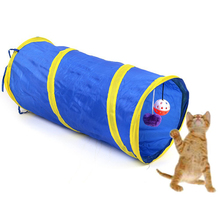 Colorful, fun stripped cat playing tunnel