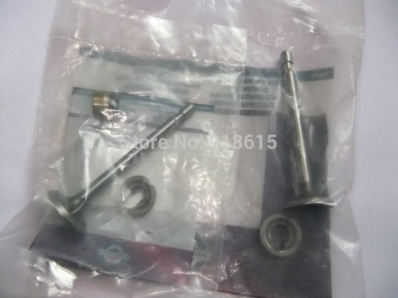 briggs&stratton 6hp 6.5hp intake valve and exhuast valve gasoline engine parts