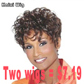 Short Wig Hairstyles Natural Afro Wigs For Black Women Cheap Women's Wigs Synthetic Curly Wigs For Black Women Hair