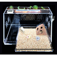 Transparent Acrylic Reptile Terrariums Plant Feeding Tank Lizard Insect Spiders Breeding Box Cage House Reptiles Accessories