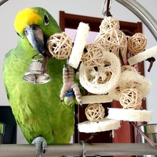 Pet Small Animal Birds Parrots Toys Handmade Chewing Bite Training Hanging Cage Rattan Balls Bell Pets
