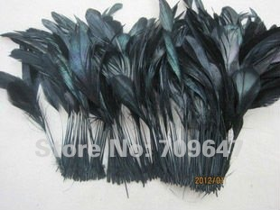 200pcs Lot 12 20cm Black Stripped Coque Feathers Black Masquerade Chicken Feathers Cocktail Hat Feathers in Feather from Home Garden