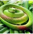 1 UNID 70 cm largo Auténtico modelo de Simulación de la Serpiente Una Parodia Divertida ésos Trampean los Juguetes Truco Broma Apoyos Animales realistas