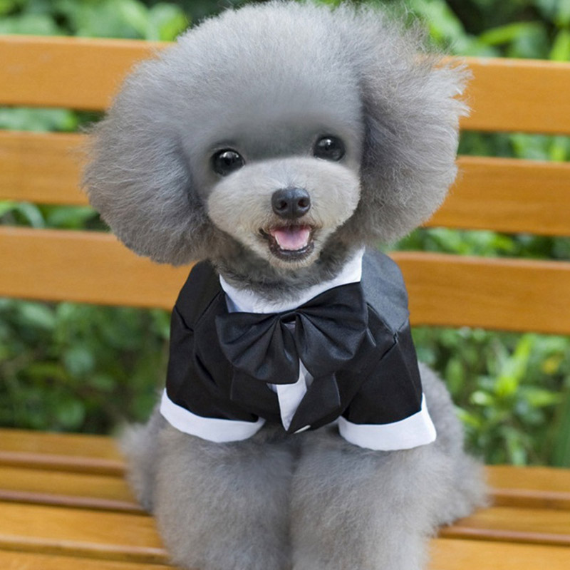 Pet Dog Cat Puppy Clothes Wedding Suit Tuxedo Costume Dog Puppy Collared Shirt Clothing MYDING