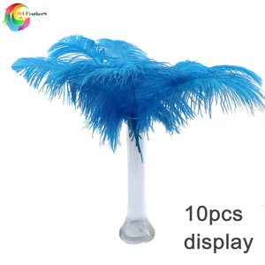 Image 5 - Wholesale 10 Pcs/Lot baby pink Ostrich Feathers For Crafts 35 40CM Carnival Costumes Party Home Wedding Decorations Plumes