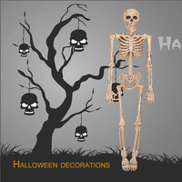 Horrible Halloween Skeleton Model Small Size Movable Skull Skeleton Halloween Hanging Props Party Scary Decoration Hot