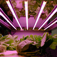 85-265 볼트 t8 138 led 성장 빛 농장 화분 식물 vegs 수경 시스템 성장/꽃 레드 + 블루 램프; led horticole