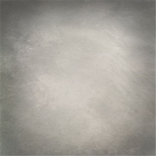 Light Grey Mix Colors Loudy Studio Vinyl Photography