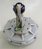100w 250rpm 14V / 28VDC Coreless Low Start Up Low Speed Permanent Magnet Alternator Generator
