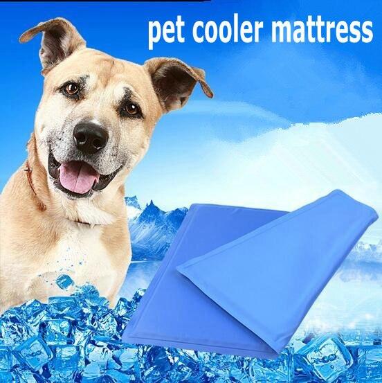 pet cooler mattress dog sleeping cool beds nice snap cat house in