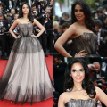 Boat Neck Backless See Through Black and White Tulle Ball Gown Mallika Celebrity Dresses 2014 Cannes