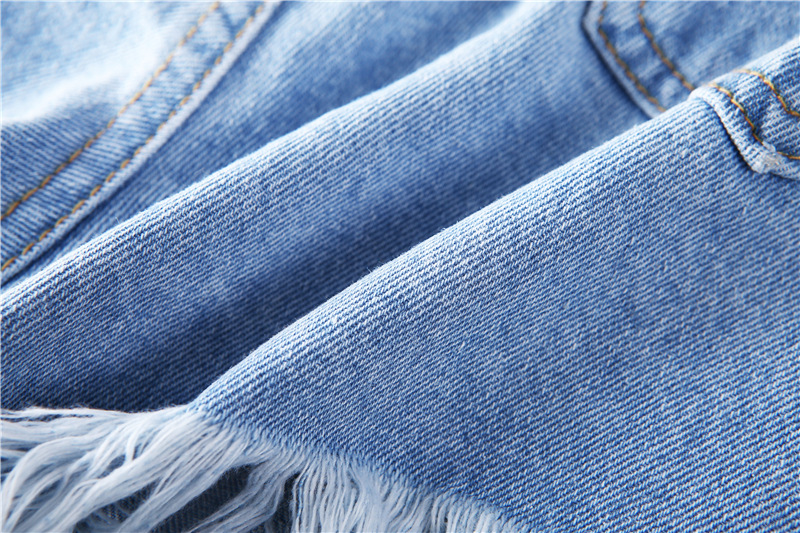 HTB1 snBQFXXXXa2XXXXq6xXFXXX5 - Floral embroidery denim shorts Women PTC 165