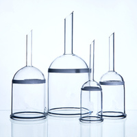 1pcs 250ml Glass Buchner Funnel,G1 G5 1# 5# Filter,Chemistry Laboratory Glassware