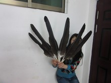 New listing! 10 pcs 22-26 inches / 55-65 cm of rare natural eagle feathers Favorites Free Shipping