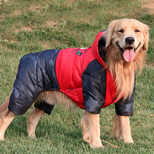 Image 1 - ماء دافئ القطن كبير الكلب الملابس الشتوية كلب كبير وزرة بذلة الكلب أسفل معطف بركة (سترة من الفراء بقبعة للقطب الشمالي) الملاكم الذهبي المسترد الملابس