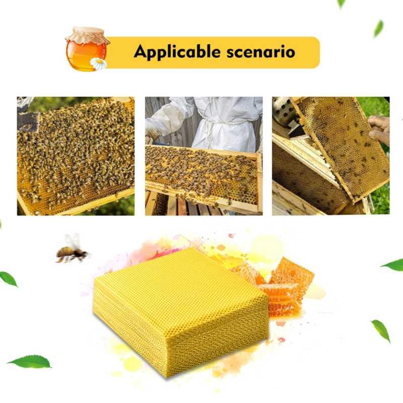 30x Farm Supplies Beekeeping Honeycomb Wax Frames /& Foundation Bee Hive 415mm US