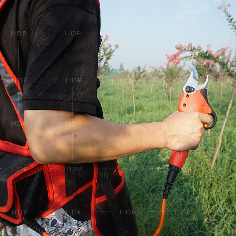 Forbici elettriche a batteria al litio da vigneto e frutteto con la - Attrezzi da giardinaggio - Fotografia 2
