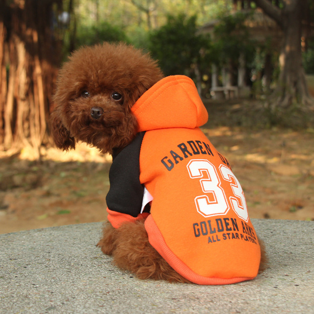 Dog Coat for Small Dogs 4
