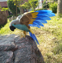 ФОТО colourful feathers parrot 16x30cm spreading wings artificial bird handicraft,prop,home garden decoration gift p2742