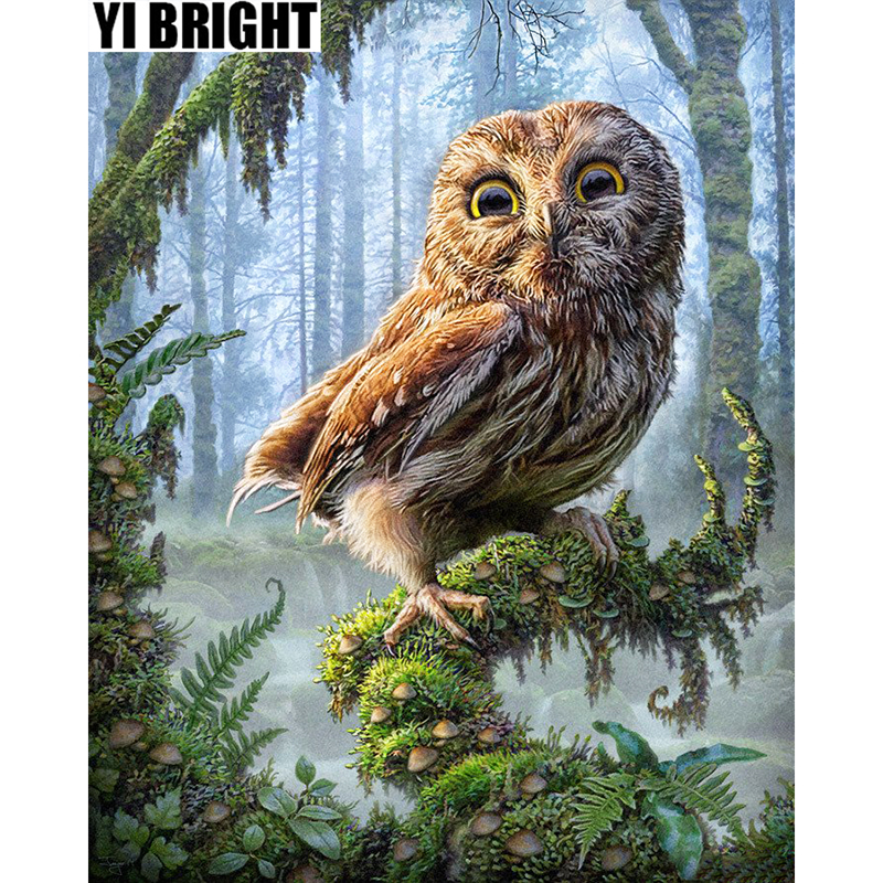 3D Diamond Painting Cross Stitch Smile Cute Owl Fantasy Crystal Needlework Embroidery Full Decoration Gift GT