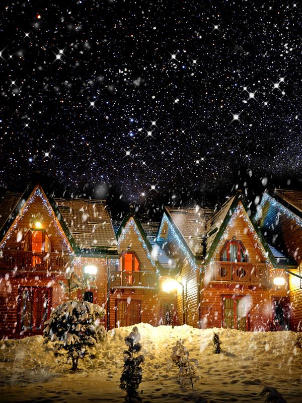 New Year Christmas House  Village  Backgrounds  High-grade Vinyl cloth Computer printed christmas photo backdrop