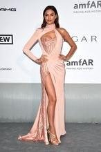 2017 Irina Shayk Cannes Film FestivalSexy Günstige Berühmtheits-roter Teppich Abendkleid Mermaid Champagne Lange Formale Abend-partei-kleid
